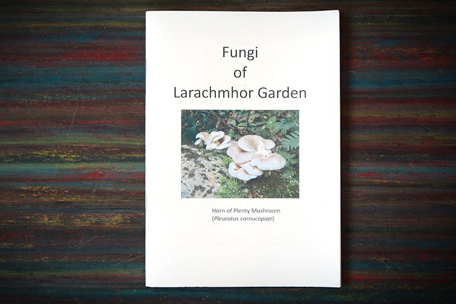 Fungi-of-Larachmhor-Gardens